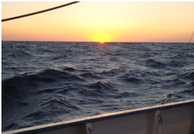 The sun setting on my first night onboard Thetys II,  15 m long research vessel