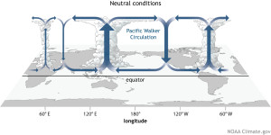 Figure 1: ENSO neutral conditions. The illustration was created by Fiona Martin and obtained from (http://www.climate.gov/sites/default/files/Walker_Neutral_large.jpg).