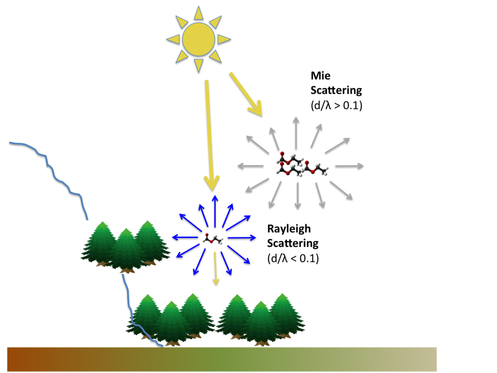 Rayleigh scattering and Mie scattering caused by VOCs emitted by forests.