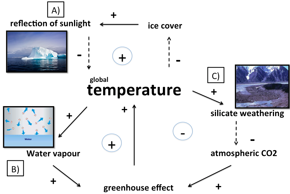 Figure 2: Major feedbacks on climate in the absence of life: A) Ice-albedo feedback (picture: [5]), B) water vapour feedback (picture: [3]) silicate-weathering feedback ( picture: [11])