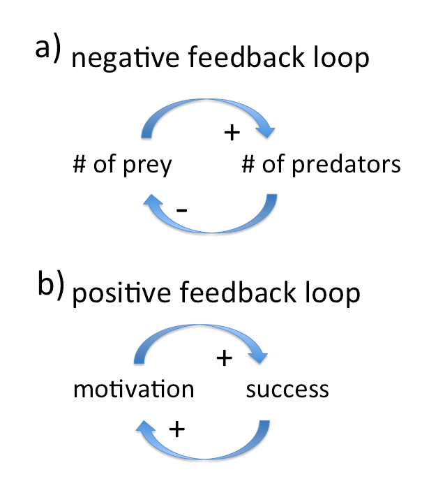 Figure 1: a) negative feedback: A higher number of prey (e.g. hares) leads to a higher number of predators ( e.g. foxes). a higher number of predators however leads to a lower number of prey, ultimately leading to a lower number of predators again. However, with declined predator numbers, the number of prey goes up again, causing predator numbers to rise again. b)a positive feedback: In an ideal world, success leads to higher motivation, which will increase the success again. Also a positive feedback: No success leads to less motivation, which again leads to even less success.