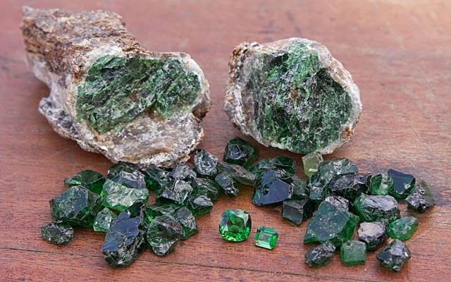 Photo 2: Tsavorite porphyroblasts, together with rough and faceted gems from the Tsavo area, Kenya. Stones courtesy of Genson Micheni Musa, Tsavolite Co. Ltd (Photo: V. Pardieu/Gübelin Gem Lab, 2007).